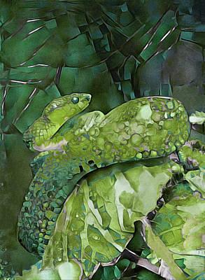 Photograph - Emerald Viper by Susan Maxwell Schmidt