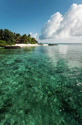 Photograph - Emerald Water Of The Maldivian Coral Reef  by Jenny Rainbow