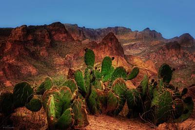 Photograph - Emeralds Of The Desert by Rick Furmanek