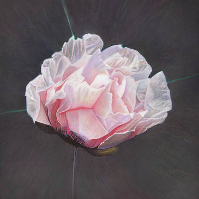 Painting - Emergence by Helen White