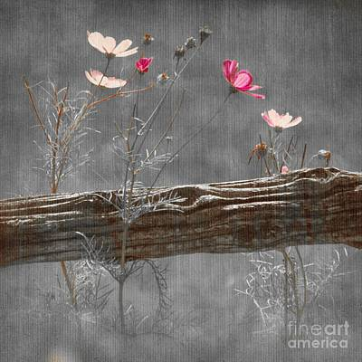Emerging Beauties - V38at1 Art Print by Variance Collections