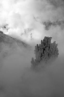 Photograph - Emerging From Winter's Fog In Yellowstone by Bruce Gourley