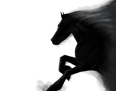 Emerging Stallion Art Print