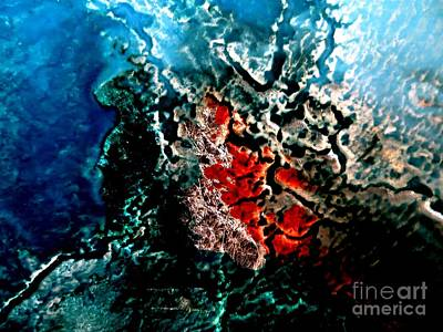 Photograph - Emerging by Tim Townsend