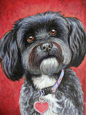 Havanese Painting - Emily by Ande Hall