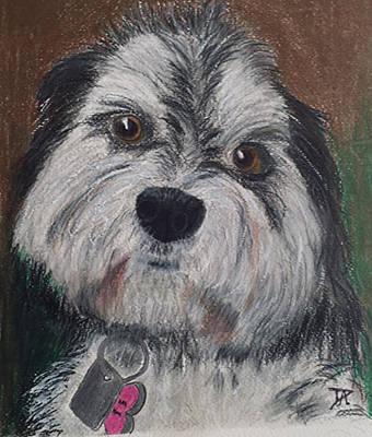 Painting - Emma by Donald Paczynski