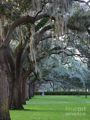 Emmet Park In Savannah Art Print