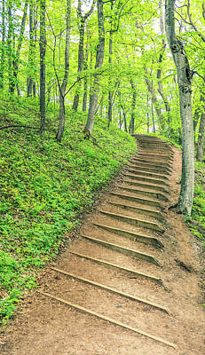 Photograph - Empire Bluffs Trail Steps In Michigan by Dan Sproul