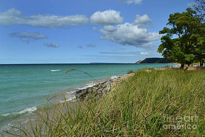 Photograph - Empire Michigan Beach by Amy Lucid