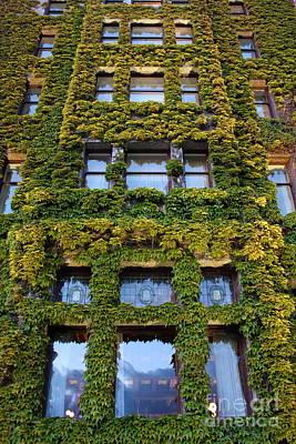 Photograph - Empress Hotel Windows by Carol Groenen