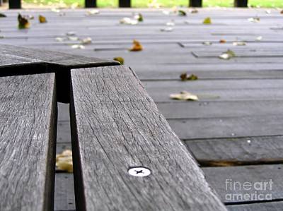 Photograph - Empty Bench And Falling Leaves by Yali Shi
