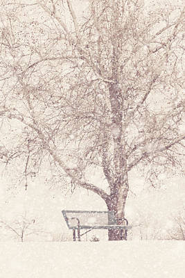 Empty Bench In A Snowstorm Art Print