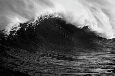 Print featuring the photograph Empty Jaws Black And White by Brad Scott