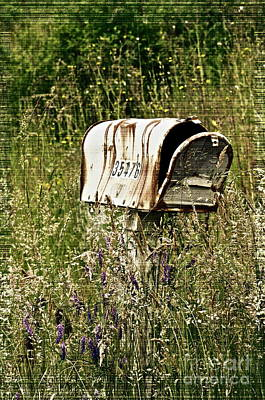 Old Country Roads Photograph - Empty Mailbox At 35476 by Gwyn Newcombe