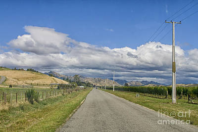 Photograph - Empty Rural Road Through Vineyards by Patricia Hofmeester