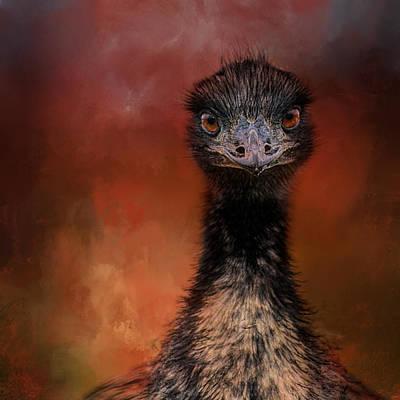 Photograph - Emu Stare by Jai Johnson