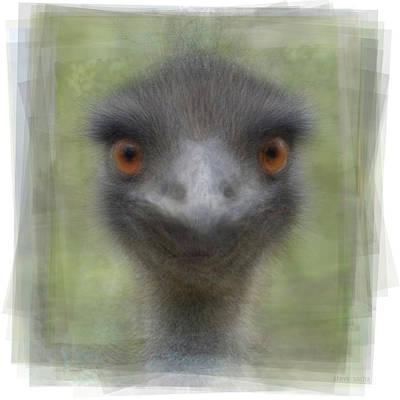 Emu Digital Art - Emu by Steve Socha