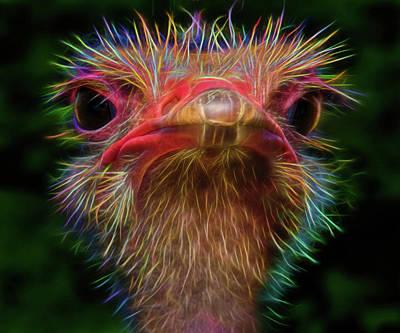 Emu Digital Art - Emu You by Mac Titmus