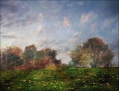 Photograph - Emulating Van Gogh by Phyllis Meinke