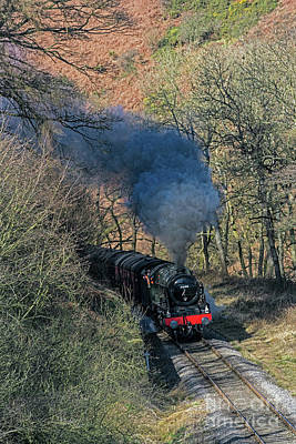 Photograph - En Route To Goathland by David  Hollingworth
