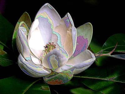 Photograph - Enamel Magnolia by Carolyn Jacob