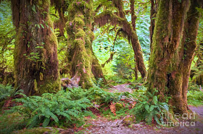 Photograph - Enchanted Forest by Sharon Seaward