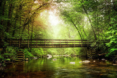 Photograph - Enchanted Bridge In The Forest by Debra and Dave Vanderlaan