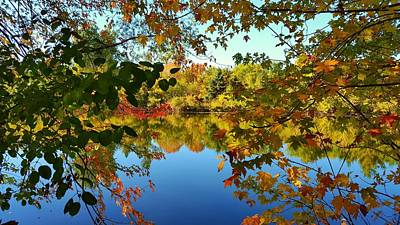 Photograph - Enchanted Fall by Valentino Visentini