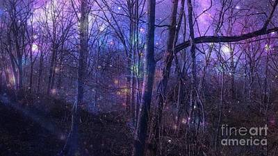 Photograph - Enchanted Forest by Amanda Kessel