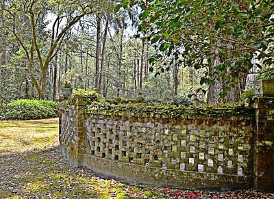 Photograph - Enchanted Garden by Linda Brown