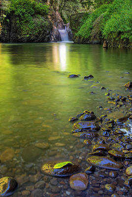 Stream Photograph - Enchanted Gorge Reflection by David Gn