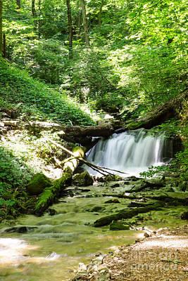 Photograph - Enchanted Hills Waterfall by Jennifer White