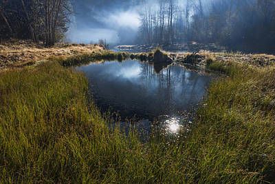 Photograph - Enchanted Pond by Dan McGeorge