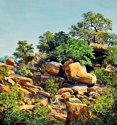 Painting - Enchanted Rock by Robert W Cook