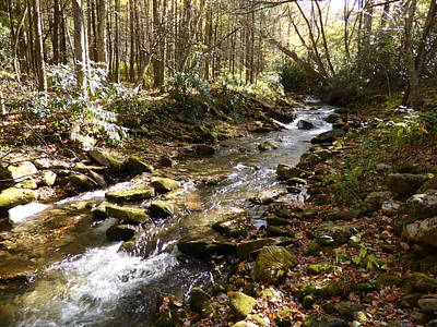 Photograph - Enchanted Stream - October 2015 by Joel Deutsch