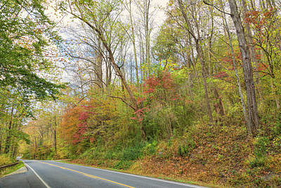 Photograph - Enchanting Drive by John M Bailey