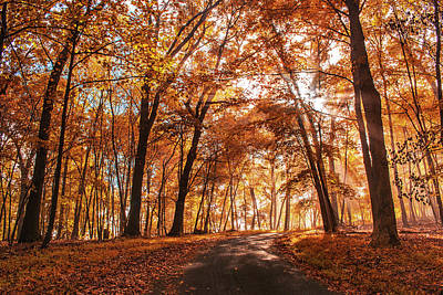 Photograph - Enchanting Fall by Rima Biswas