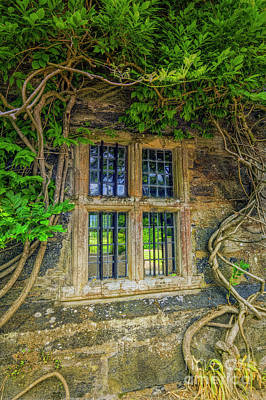 Photograph - Enchanting Window by Ian Mitchell