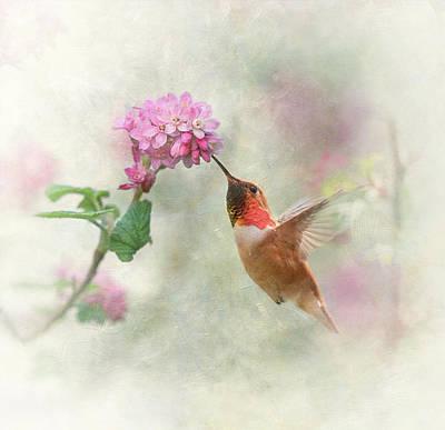 Enchantment In The Garden Art Print