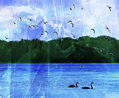 Photograph - Enchantment Of Lake Wollumboula by Miroslava Jurcik