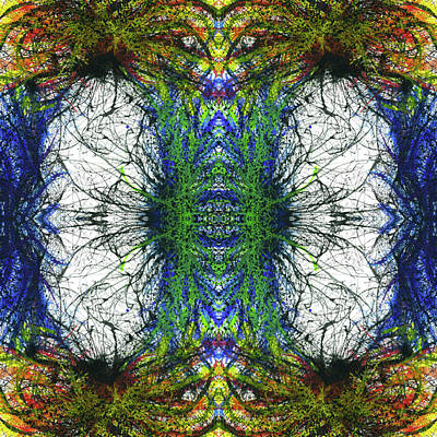 Fireworks Mixed Media - Enchantment Of The Collective Evolution #1508 by Rainbow Artist Orlando L aka Kevin Orlando Lau