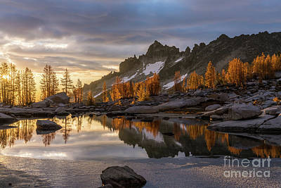Photograph - Enchantments Golden Sunrise Larches Reflection by Mike Reid