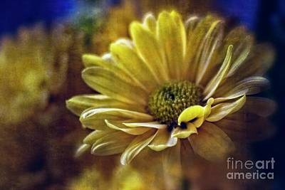 Mixed Media - Encounter Floral Contemporary Art #703 by Ella Kaye Dickey