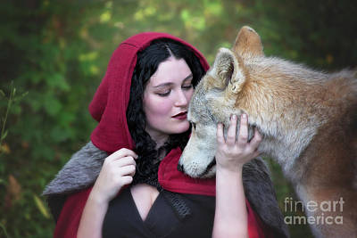 Photograph - Encounter With Red Riding Hood by Sharon McConnell