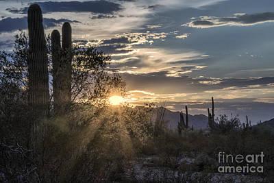 Desert Sunset Digital Art - End Of Day Rays by Georgianne Giese