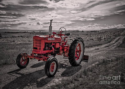 Photograph - End Of Road For Big Red Farmall by Janice Rae Pariza