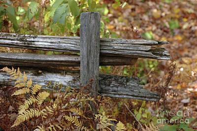 Split Rail Fence Photograph - End Of The Rail by Kathy Carlson