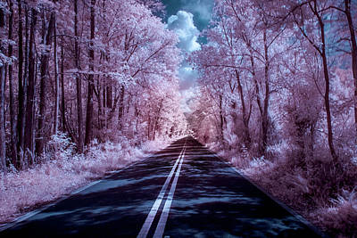 Art Print featuring the photograph End Of The Road by Louis Ferreira