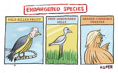 Drawing - Endangered Species by Peter Kuper