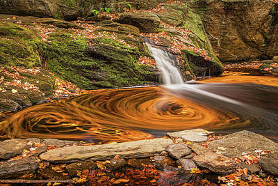Photograph - Enders Falls Leaf Trails 3 by John Vose